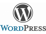 WordPress (4)